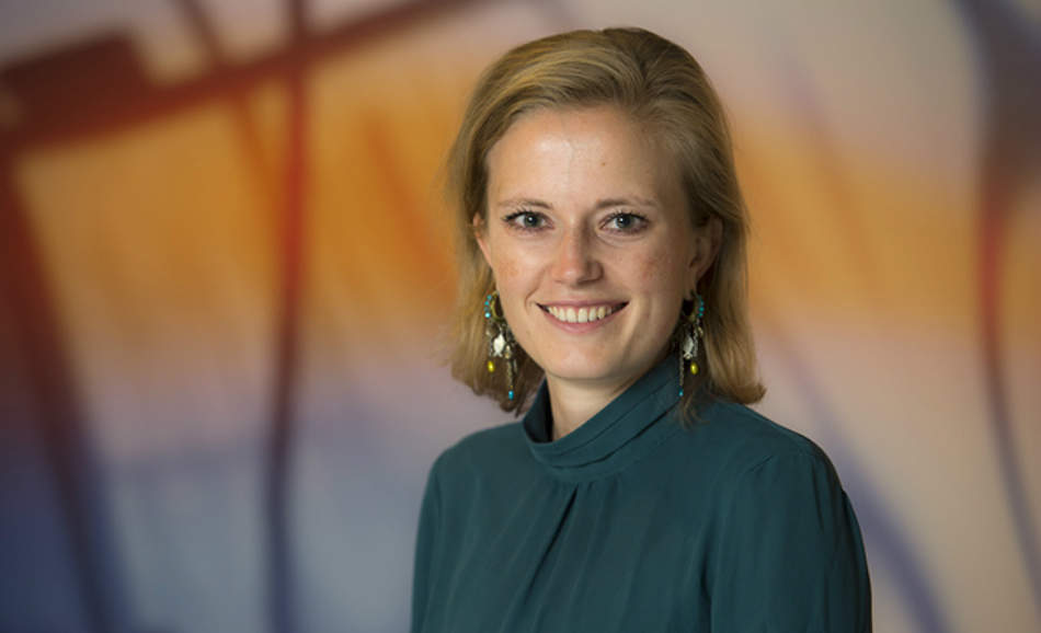 Willemijn Brouwer, Royal DSM
