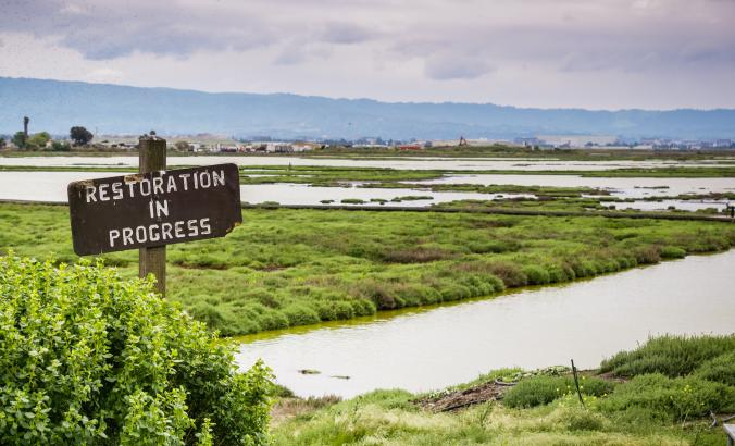 Wetlands restoration in San Francisco Bay Area