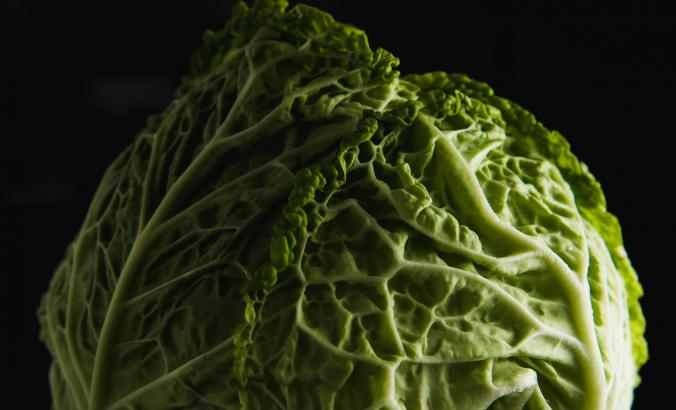 Head of cabbage with a black background