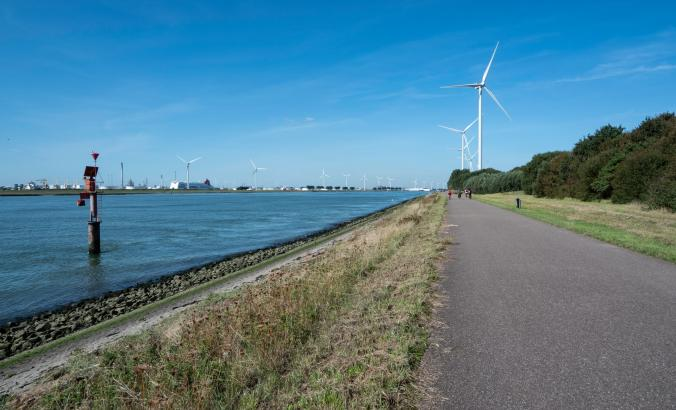 A path surrounded by greenery with wind turbines in the distance