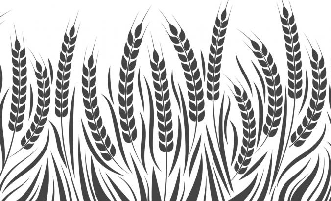 Illustration of wheat