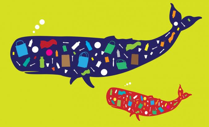 Illustration of plastic waste in whales in the ocean.