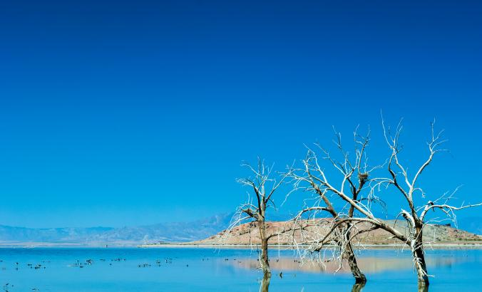 The Salton Sea near Joshua Tree in California