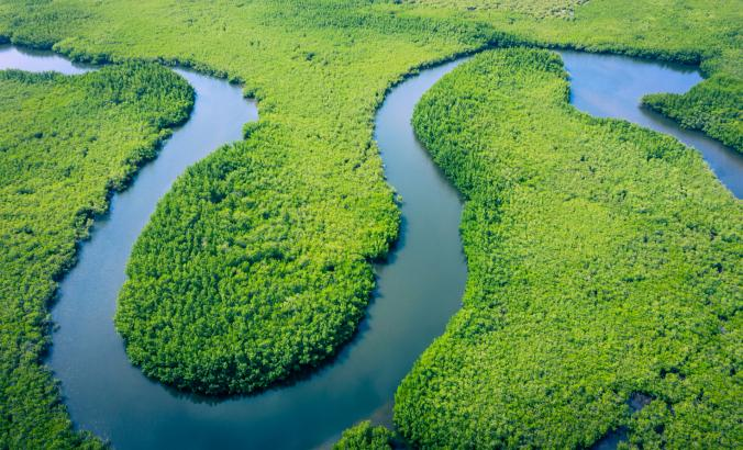 Aerial view of Amazon River.